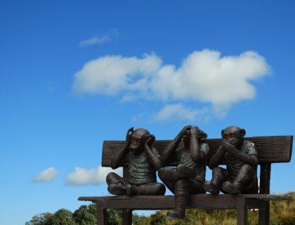 Drei Affen auf Bank