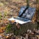Laptop in Natur