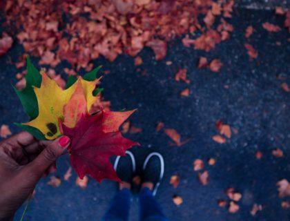 Kulturtipps Oktober